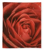 Rose Waiting In The Rain Fleece Blanket