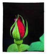 Rosebud Fleece Blanket