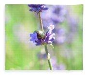 Rosemary And Lavender Fleece Blanket