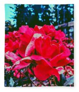 Roses At Mont Alto Fleece Blanket