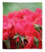 Roses Close Up Nature Spring Scene Fleece Blanket
