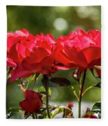 Roses On A Sunny Day Fleece Blanket