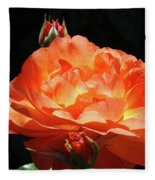 Roses Orange Rose Flowers Rose Garden Art Baslee Troutman Fleece Blanket