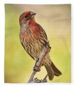 Rosy Finch Macro Fleece Blanket