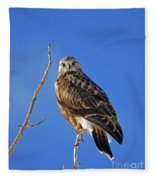 Rough-legged Hawk Fleece Blanket
