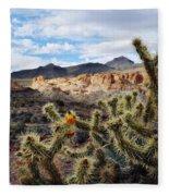 Route 66 Mojave Desert Fleece Blanket