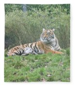 Royal Bengal Tiger Fleece Blanket