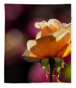 Royal Colors Fleece Blanket