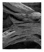 Royal Deadwood Study 2 Fleece Blanket