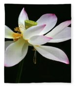 Royal Lotus Fleece Blanket