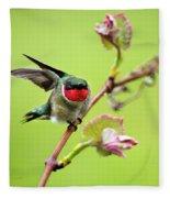 Ruby Garden Hummingbird Fleece Blanket