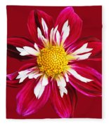 Ruby Glow Fleece Blanket