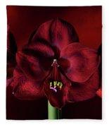 Ruby Red Amaryllis Fleece Blanket