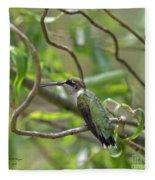 Ruby-throated Hummingbird - Female Fleece Blanket