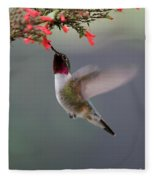 Ruby Throated Hummingbird Fleece Blanket