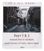 Rue Gregorie De Tours Cover Art Fleece Blanket