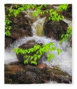 Rugged Landscape Fleece Blanket