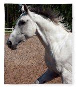 Running Horse Fleece Blanket