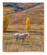 Rural Colorado  Fleece Blanket