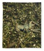 Rusty Crayfish At Night Fleece Blanket
