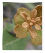 Rusty Lyonia Fleece Blanket
