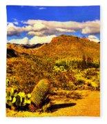 Sabino Canyon Panorama No. 1 Fleece Blanket