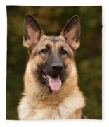 Sable German Shepherd Fleece Blanket