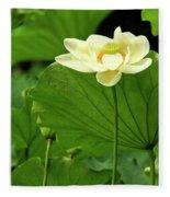 Sacred Lotus In Black Frame Fleece Blanket