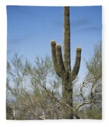Saguaro 8 Fleece Blanket