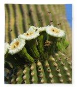 Saguaro Cactus Flower 8 Fleece Blanket