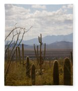 Saguaro National Park Az Fleece Blanket