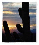 Saguaro National Park Sunset Landscape Fleece Blanket