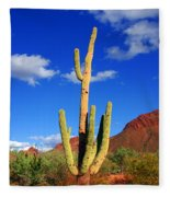Saguaro Np Fleece Blanket