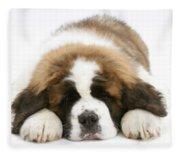 Saint Bernard Puppy Sleeping Fleece Blanket