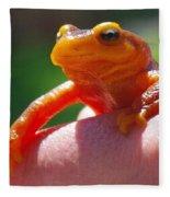 Salamander Fleece Blanket