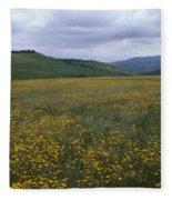 Salisbury Potrero - Sierra Madre Mountains Fleece Blanket