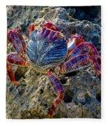 Sally Lightfoot Crab 1 Fleece Blanket