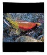 Salmon Spawning Fleece Blanket
