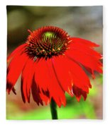 Salsa Red Coneflower Fleece Blanket