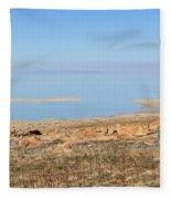 Salt Lake View Fleece Blanket