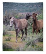 Salt River Wild Horses-img_747217 Fleece Blanket