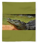 Saltwater Crocodile By Kaye Menner Fleece Blanket