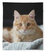 Samson_speaks Kitten Years Fleece Blanket