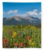 San Miguel Mountains Fleece Blanket