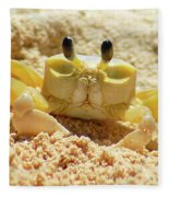 Sand Crab Fleece Blanket