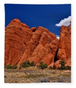 Sand Dune Arch Fleece Blanket