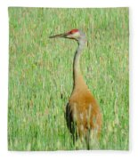 Sand Hill Crane Fleece Blanket