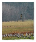 Sand Hill Crane Migration Fleece Blanket