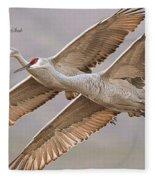 Sandhill Crane 11 Fleece Blanket