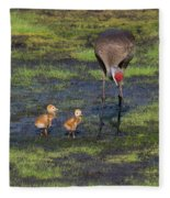 Sandhill Crane And Babies Fleece Blanket